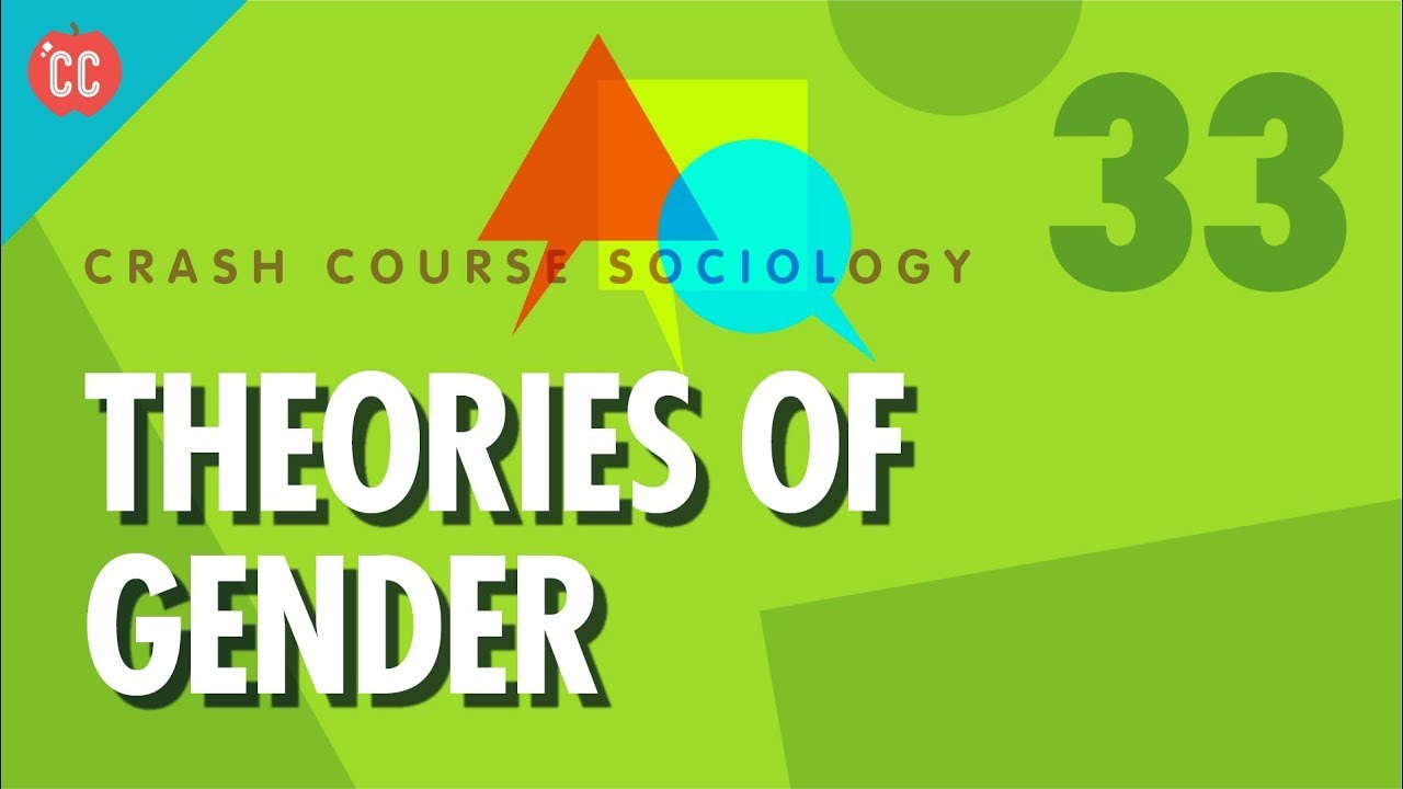 The Sociology of Gender: An Introduction to Theory and Research (Key Themes in Sociology)