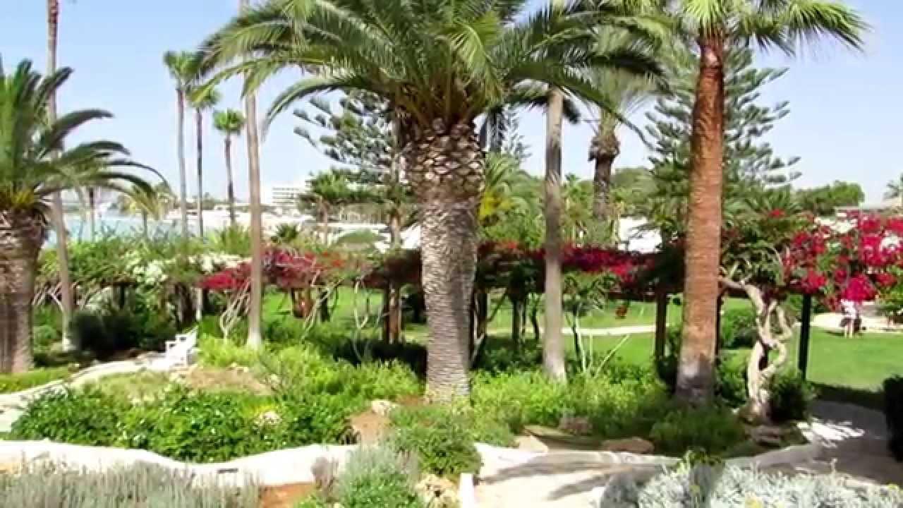 Nissi Beach Hotel HD - 2014 - Garden areas - YouTube