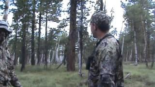 2012 Colorado Unit 61 Archery Elk Hunt