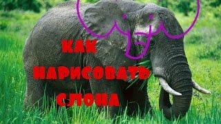 Как нарисовать слона(Всем привет вы на канале Агонёк. В этом видео я вам хочу показать как можно нарисовать слоника. Всем приятно..., 2016-12-25T19:41:38.000Z)