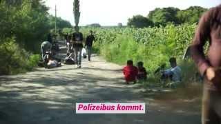 Ungarn: Die Jagd auf Flüchtlinge