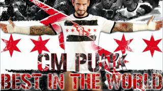 "CM Punk Theme Song ""Cult Of Personality"" mp3"