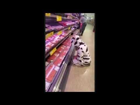 Luis Treviño - VIDEO: Vegana Se disfraza De Vaca Y Llora En Pasillo De Carnes