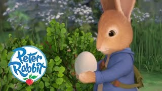 Peter Rabbit - Catch the Egg  Cartoons for Kids