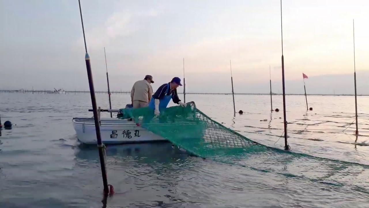 カンパネラ 漁師 ラ