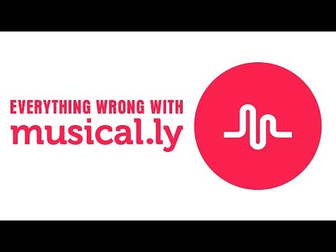 Everything Wrong With Musical.ly
