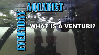 What is a Filter Venturi System?