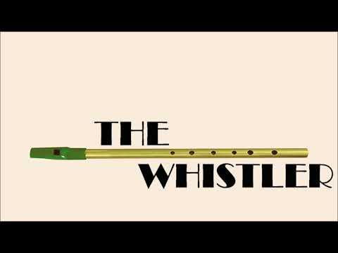 Paradise (George Ezra) - Tin Whistle Cover