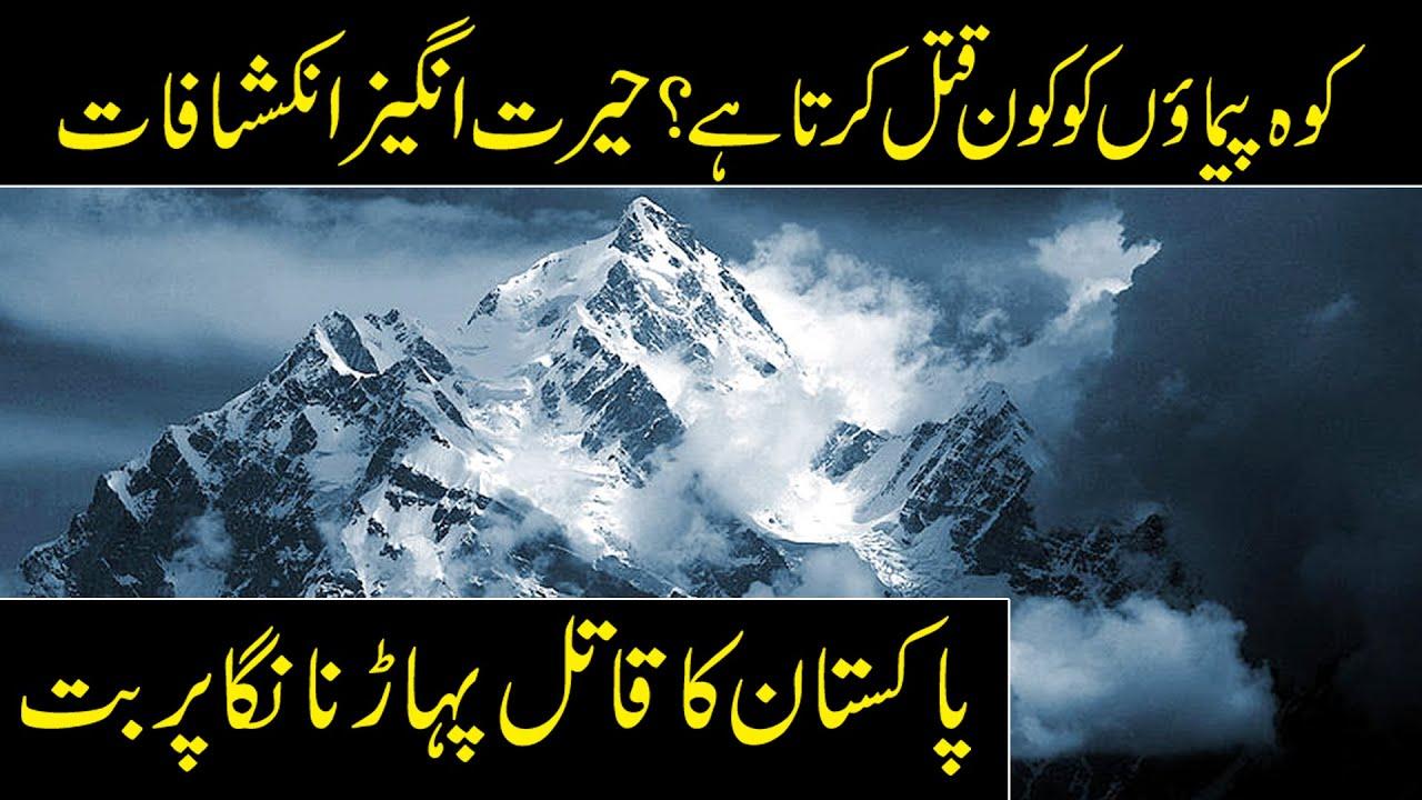 Download Nanga Parbat | Pakistan Killer Mountain | Fairy Meadows