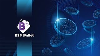 B2B Wallet Cryptocurrency