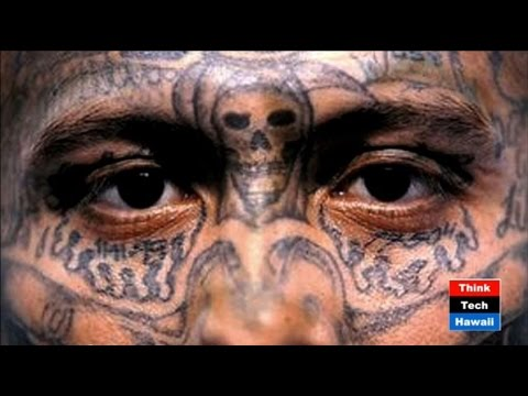 Ugly Partners: Mexican Cartels, ISIS/Al Qaeda and Organized Crime