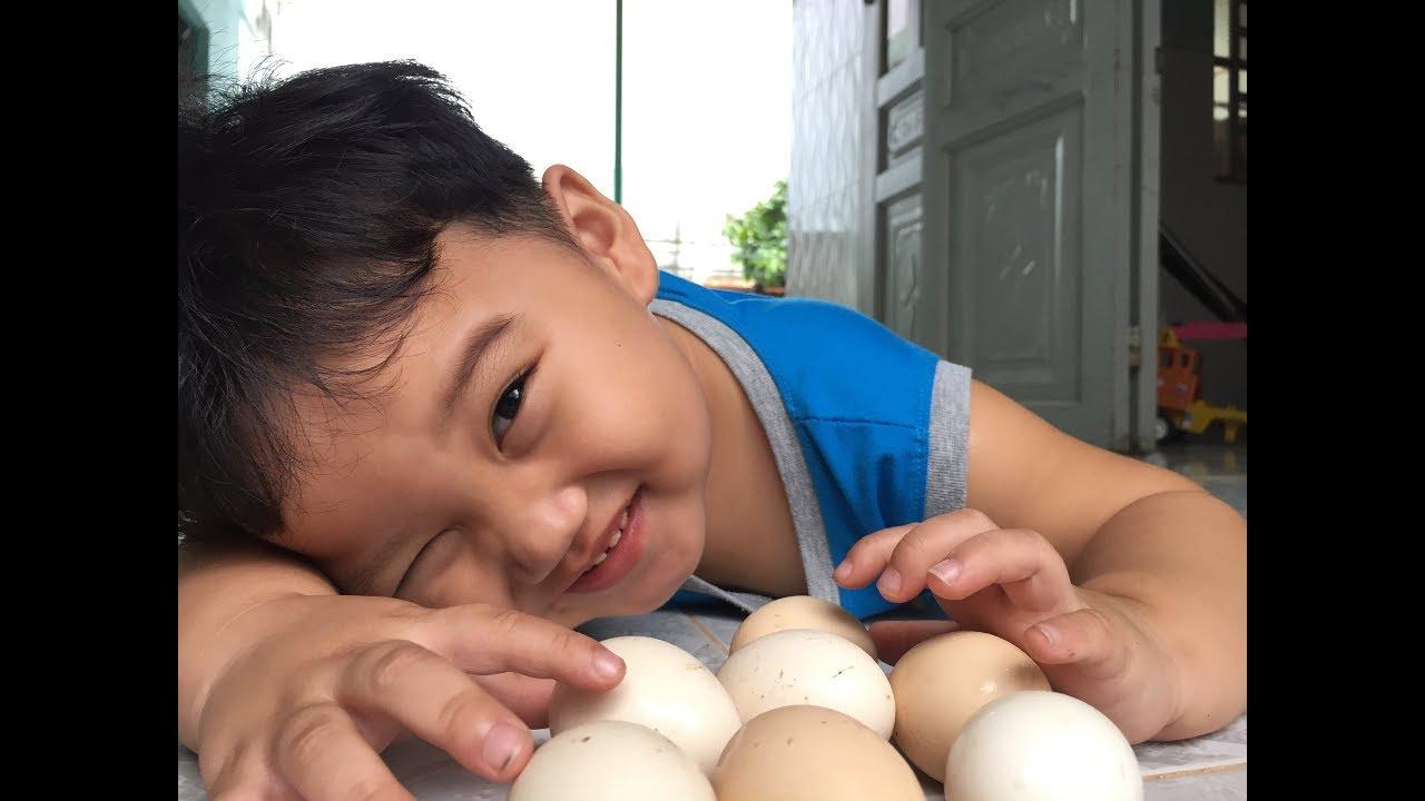 Trò Chơi Shin Lượm trứng gà ăn ❤ Ba và Shin Đồ Chơi