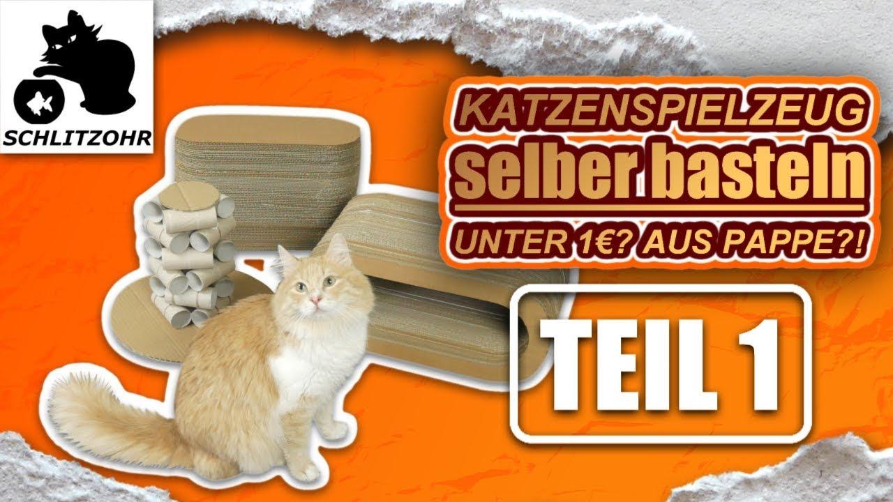 Katzenspielzeug Selber Basteln Unter 1 Teil 1 Von 2 Diy Katzenspielzeug Hacks