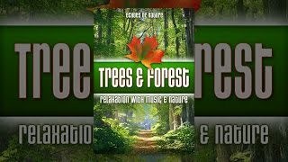 Trees & Forest: Echoes of Nature Relaxation with Music & Nature