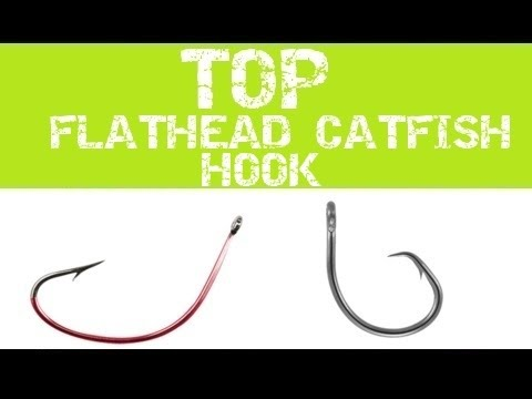 BEST CATFISH HOOK