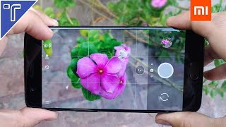 Xiaomi Mi 6 Camera Review - All Camera Features Explained!