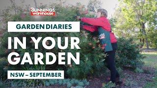 Gardening in September | NSW | Bunnings Garden Diary