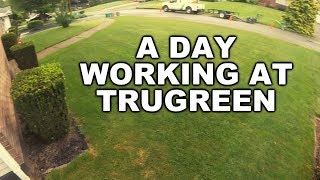 WORKING AT TRUGREEN THIS IS WHAT IT'S LIKE. Aeration and Overseeding.