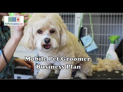 Mobile Pet Grooming Business Plan Example Template
