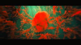 Adele -- Skyfall Заставка к фильму 007 Координаты Скайфол