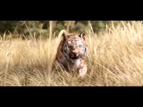 The Jungle Book - International Trailer