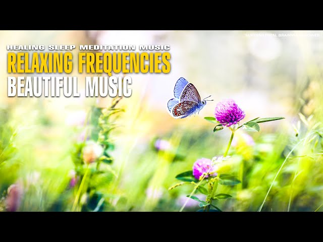 432 Hz !! Lucky You Relaxing Music ! Frequencies & Piano Music For Meditation ! Listen While Sleep
