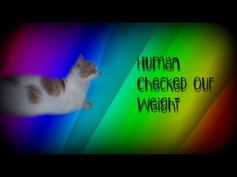 Human Checking Our Weight + We Are Not Over Or Under Weight.