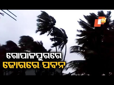 Cyclone Titli Live - Wind speed picking up at Gopalpur