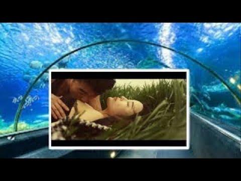 [mv]-sumber-dosa-adalah-keinginan-/-the-sins-of-desire,-2016-trailer