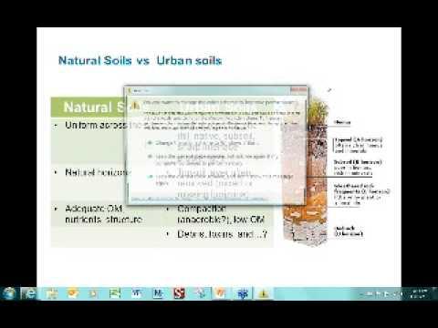 Creating Healthy Soil Using Soil Amendments