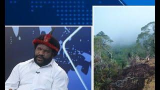 Dialog: Pemicu Penembakan 31 Pekerja Trans Papua karena Isu Lokal, Betulkah ? (2)
