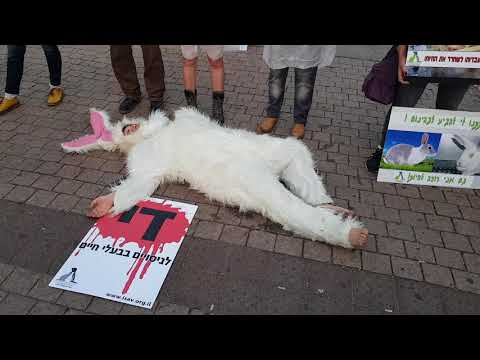 Animal rights activists protest against animal cruelty - Tel Aviv Israel