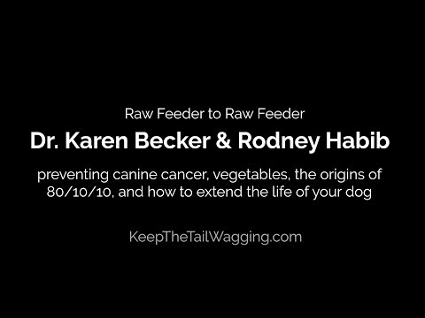 Dr. Karen Becker & Rodney Habib: Raw Feeding and Preventing Canine Cancer