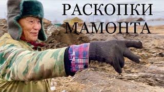 Раскопки Мамонта в городе Нюрба Якутия
