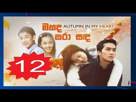 Autumn In My Heart Episode 12 Subtitle Indonesia