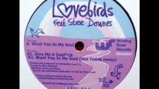 Lovebirds feat Stee Downes - Want You In My Soul (Hot Toddy Remix)