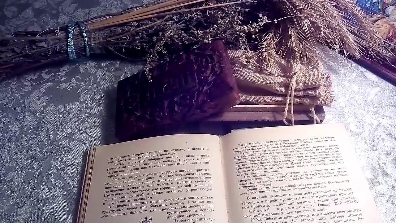 Копытень европейский – растение семейства кирказоновых. В основном корень используют для лечения алкоголизма. Копытень помогает при мигрени, невротических состояниях, бессоннице, гинекологических заболеваниях.