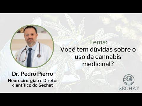 Você tem dúvidas sobre o uso da cannabis medicinal?