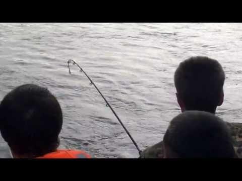 рыбалка верхняя ангара на тайменя