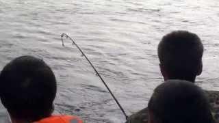 Рыбалка 2013г река Ангара