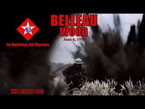 Battle for Belleau Wood: United States Marine Corps