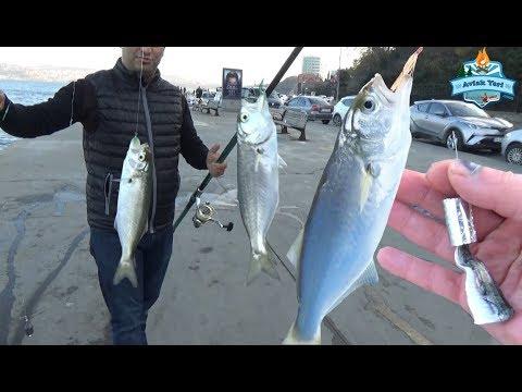 İstanbul'da Balık Nerede ve Nasıl Yakalanır? - Boğazdayız ;) - 16 Aralık 2017