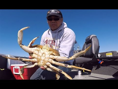 Crabbing On The Oregon Coast.   Catching Crab With A Crab Snare