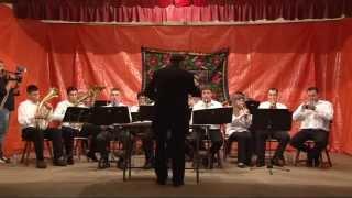 Fanfara Progresul Vlajkovac - Hora mare vrâncenească