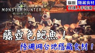 【MHW】陸珊瑚台地隱藏食材!藤壺色鮑魚!快速入手指南!| 魔物獵人世界
