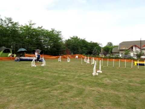 Kun Dorka és Hana - Smaragd kupa - zsenge jumping II.