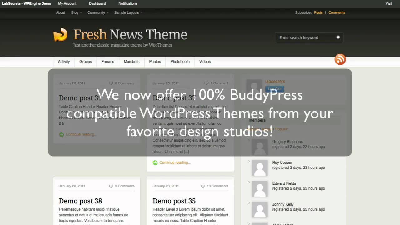 BuddyPress compatible WordPress themes from your favorite design studios!