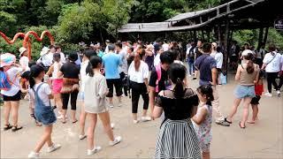 2018 8 7 漫遊清遠古龍峽玻璃雙橋