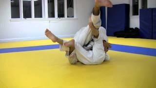 Brazilian Jiu-Jitsu: Pedro Sauer Half Guard Butterfly Hook Counter