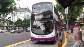 Lornie Highway (Phase 1) Part 1 - Bus Route/Service 74 feat. Volvo B9TL WEG2, SBS3676G
